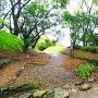 石垣からの土塁(三の段)