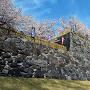 坂下門石垣