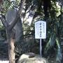 清政公の旗立石