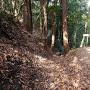 竪掘と土塁