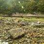 散乱する海底の積み石