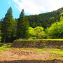 米蔵の石垣