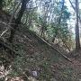青柳城の堀切断面
