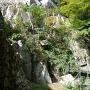 大手門跡のそばにある崖