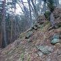 本郭切岸の石積み2