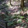 三ノ丸跡の井戸跡