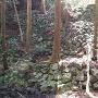ニノ門跡の石垣