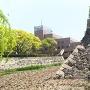 熊本城と同じ石垣