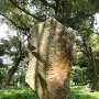 日新公生誕の石碑