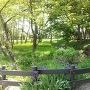公園北からの眺め