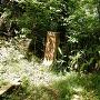 空濠跡石碑