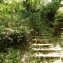 きつい階段