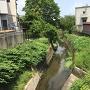 堀跡(納所川)