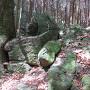 尾根登山道1