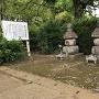 東林寺城跡五輪塔