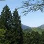 立雲峡駐車場より見た城跡全景