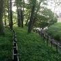 花崎城山公園