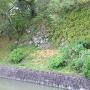 二ノ丸堀石垣(西側)