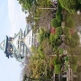 鳥と大阪城