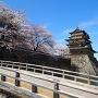 春の高島城(冠木橋前から)