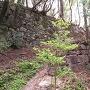四十八曲がりの16~17番目の石垣