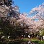 桜雲橋そばの空堀