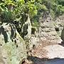 妙見神社裏側石垣
