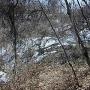 虚空蔵山城北斜面の段郭