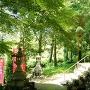 寺野六所神社[提供:浜松市]