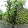 苔に覆われた石垣