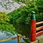 水濠の風景