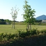 城址風景から見る筑波山