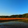 山本山(東より)