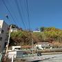 若神子城遠景