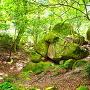 花崗岩の巨石群
