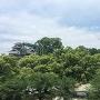 天守と飯田丸五階櫓