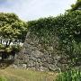 南西角の石垣