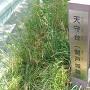 関戸城跡碑
