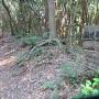 山麓畝状竪堀群