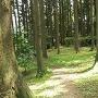 桜井ノ曲輪跡