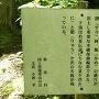 桜清水の説明板