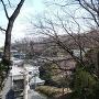大丸公園から、城址城山を望む
