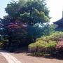 重文前山寺三重塔(未完成の完成の塔)