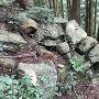 石垣@出丸櫓跡