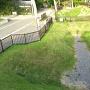 空堀と土塁と土橋全景