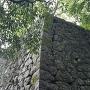 本丸北側の石垣