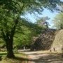 苔むす石垣
