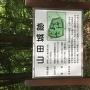 森林公園の中に