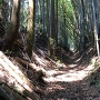 荒上から東光寺ビョウへ向かう道