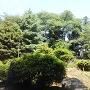 城址北東の御嶽神社